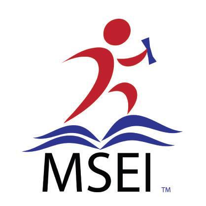 MSEI Logo.jpg